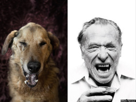 A Photographer Made These Rescue Dogs Look Like Famous Writers