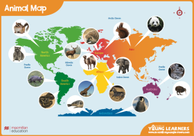 Animal World Map Activity